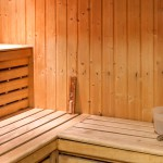 Chamonix la Ginabelle Sauna