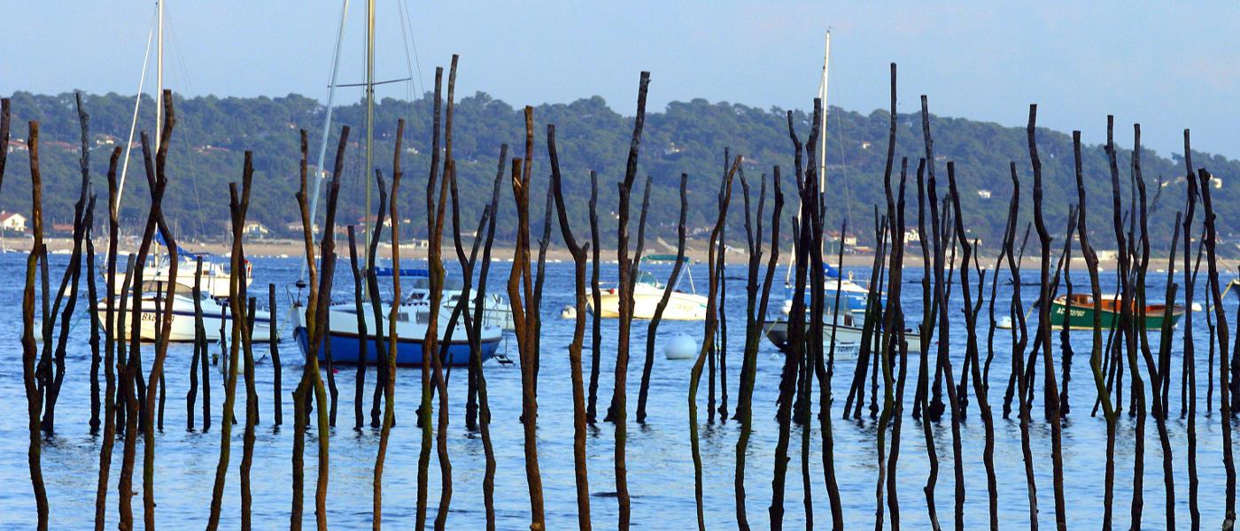 Gascony Boats