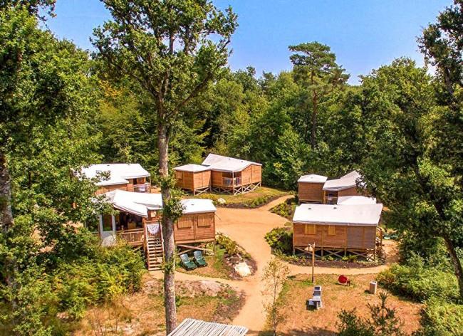 Les Alicourts Explorer Lodge Setting 600h