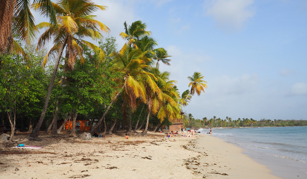 Martinique Grand Anse des Salines