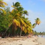Martinique Grande Anse des Salines