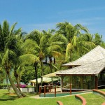 Martinique Sainte Luce Beach Restaurant