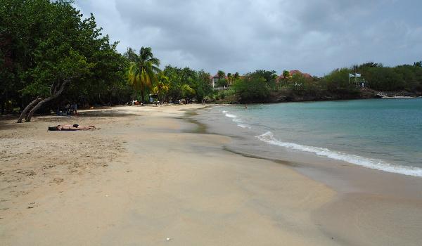Martinique Sainte Luce Beach