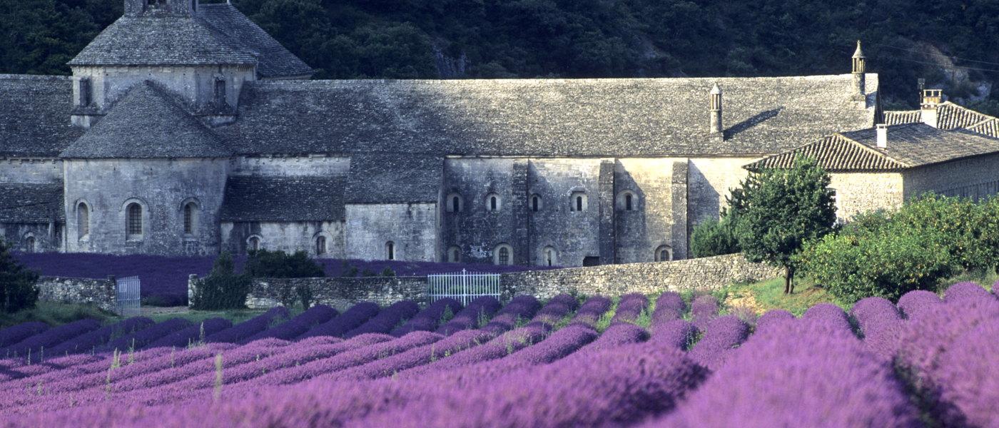 Riviera Provence Gordes Lavender