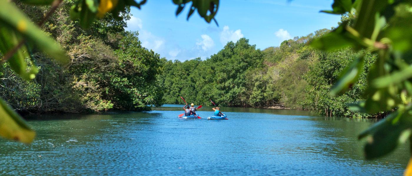 Guadeloupe Canoe Safari