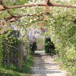 Dordogne Le Paradis Pergola