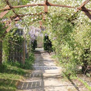 Dordogne Le Paradis Thumbnail
