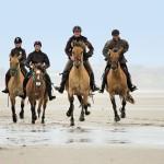 belle dune horse riding