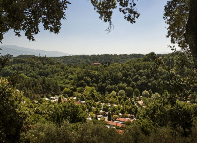Norcenni - Resort setting; hillside overlooking olive groves