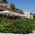 Cala Cristal Gardens
