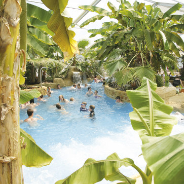 Domaine des Ormes, Indoor Tropical Pool