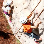 Domaine Des Ormes Climbing Wall