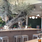 Firefly Holidays Villages Vapiano