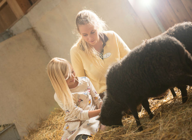 Firefly Holidays Villages Nature Ferme Lambs