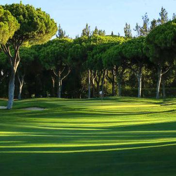 Firefly Holidays Laguna Resort Vilamoura Old Course Golf 363