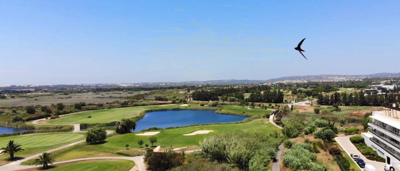 Firefly Holidays Laguna Resort Vilamoura Swift Round of Golf
