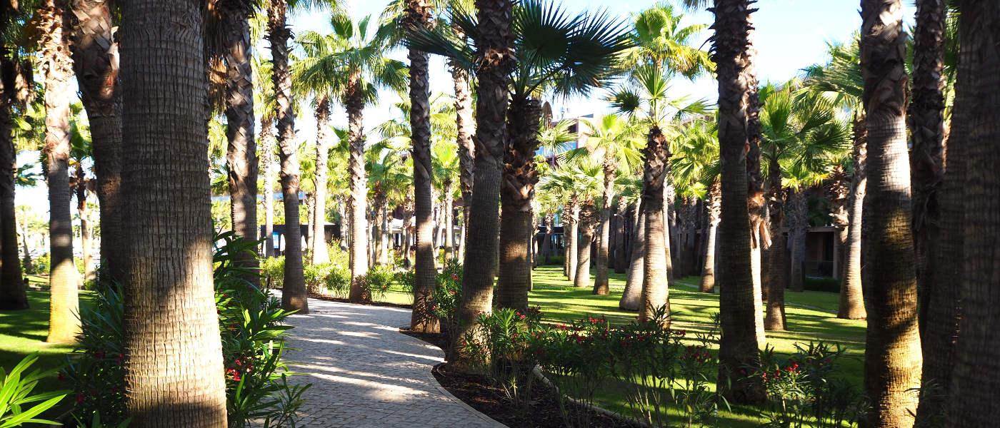 Firefly Holidays Vidamar Resort Villas Salgados Grounds