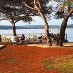 Firefly Holidays Lanterna Premium Camping Peninsula Terrace
