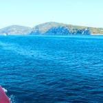 Firefly Holidays Croatia Cruises Side View 1