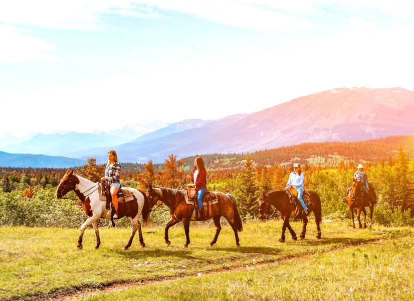 Firefly Holidays Jasper Horses 1 600h