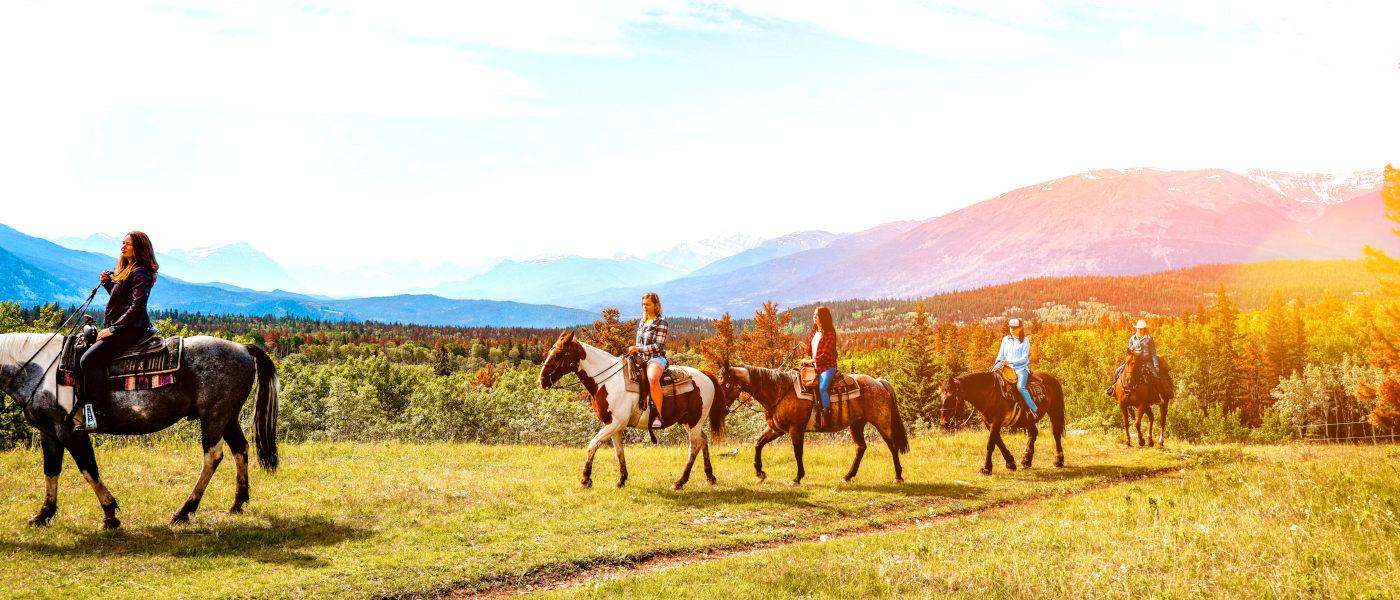 Firefly Holidays Jasper Horses 1