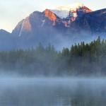 Firefly Holidays Lake Herbert Paddle