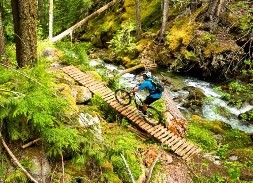 Firefly Holidays Whistler MTB 1 600h