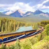 Mountain Rail 300