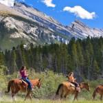 Firefly Banff Trek