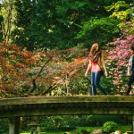 Firefly Vancouver Memorial Gardens