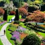 Firefly Victoria Butchart Gardens