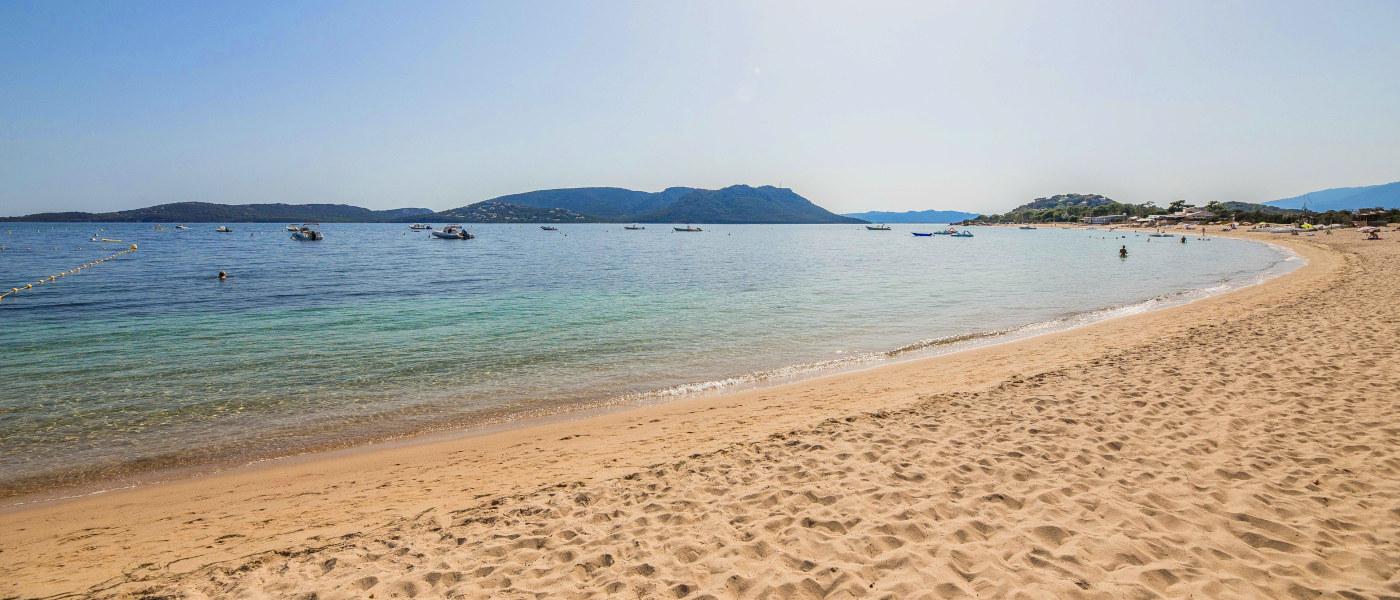 Firefly Corsica Beach
