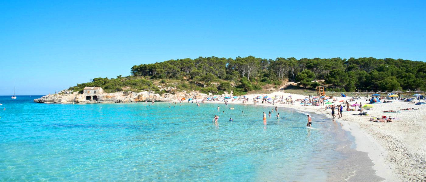Firefly Mallorca Majorca Beach 1