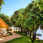 Firefly Holidays Istra Glamping Tent Setting