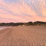 Cypsela Beach 2