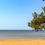 Sanguinet Plage Beach 2