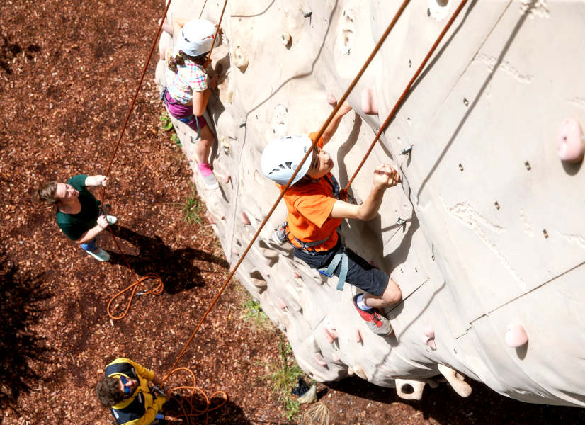 Domaine Des Ormes Climbing Wall 600h